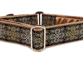 Top Martingale Dog Collars Brands