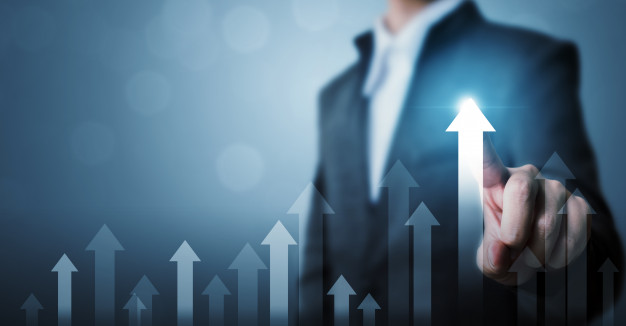 business growth consultants