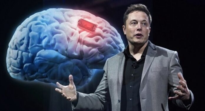 what is elon musk's iq